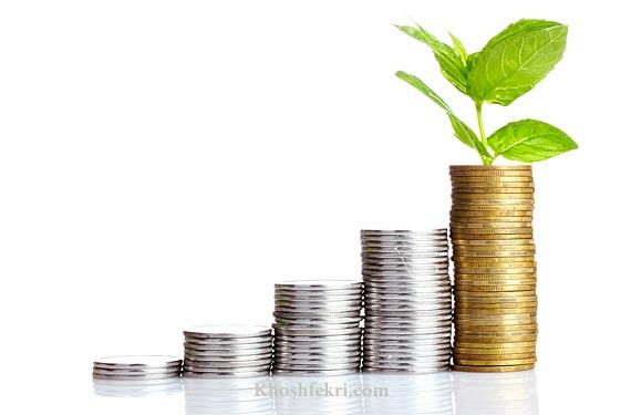 چگونه با کمترین سرمایه ممکن  کسبوکار جدیدی را  شروع کنید؟    5 روش تامین سرمایه به صورت خودراهانداز Bootstrap Financing