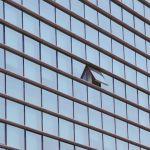 چرا نوآوری در شرکتهای بزرگ آنقدر دشوار است؟