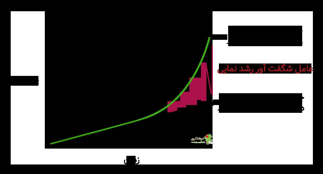 رشد نمایی نوآوری تحول آفرین