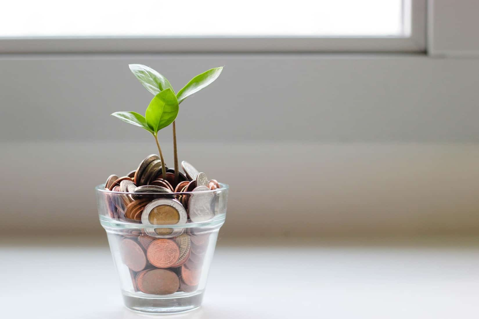 سرمایه گذاران چه پارامترهایی را در تصمیم به سرمایه گذاری مورد توجه قرار میدهند؟